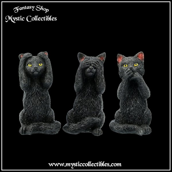 ct-fg003-1-three-wise-felines