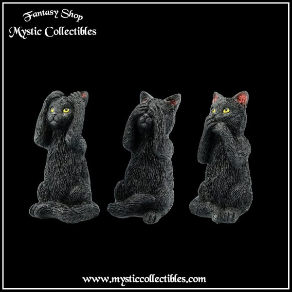 ct-fg003-3-three-wise-felines