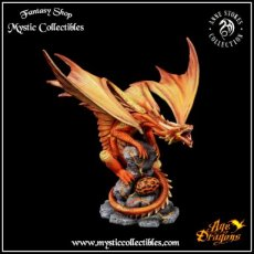 Beeld Fire Dragon Adult - Anne Stokes - Age of Dragons (Draak - Draken)